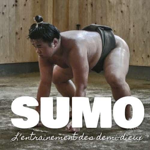 Sumo, l'entraînement des demi-dieux