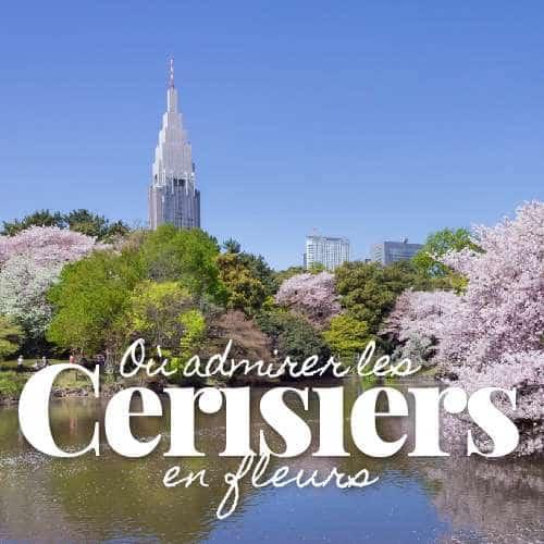 Où admirer les cerisiers en fleurs au Japon ?