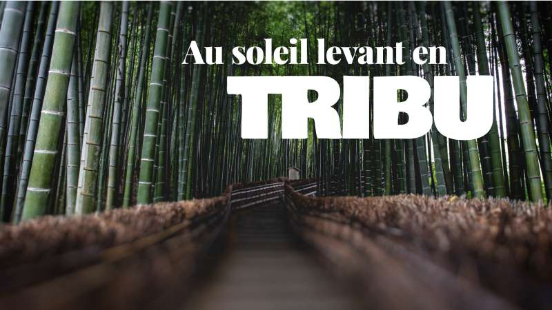 Voyage au Japon en tribu ou en famille